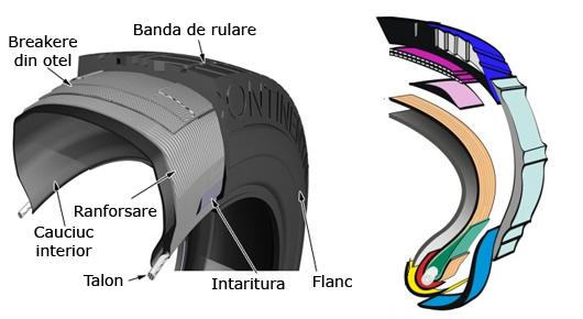 anvelope radiale compnete si constructie. Banda de rulare, Flancul, Intaritura, Cauciucul interior, Talonul anvelopei, Ranforsarea (carcasa) anvelopei, Breakere